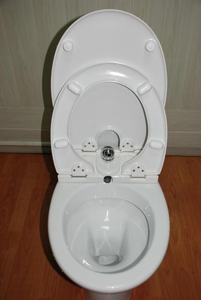 Toilet with bidet cover