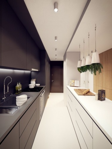 design-narrow-long-kitchen-features-photo14-t_s