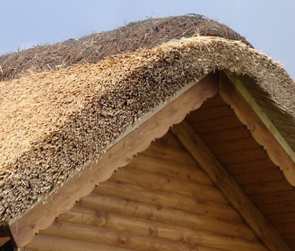 how to make the roof of reeds
