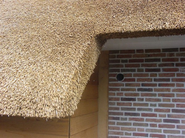 how to cover the roof of reeds