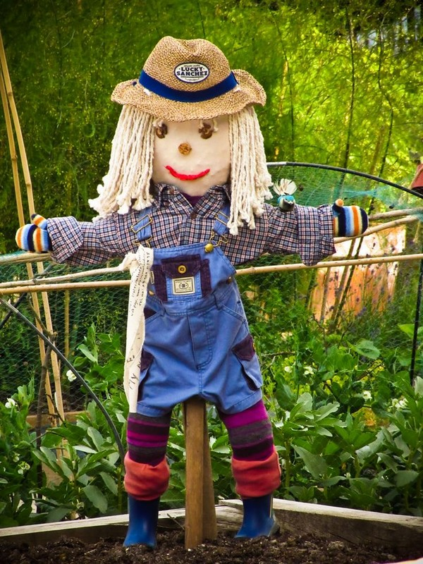 Scarecrow in blue trousers to scare birds