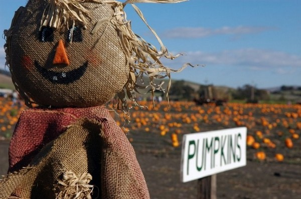 Scarecrow with their hands from a sacking