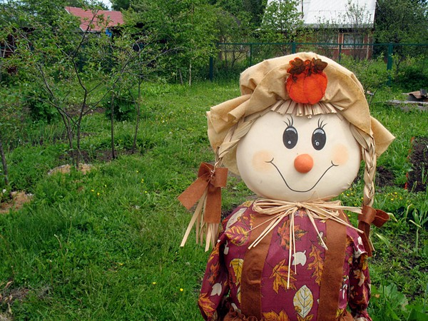 How to make a scarecrow to the garden with a head