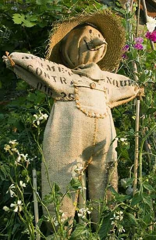 scarecrow with his hands photo