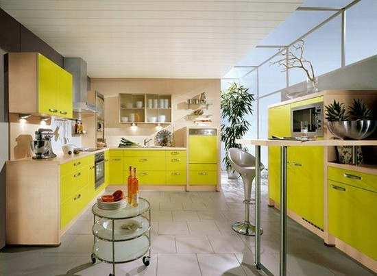 How to choose the kitchen