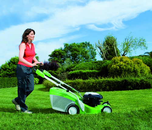 Lawn grass - mowing the lawn mower