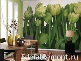 Photo Wall Mural Photo Tulips
