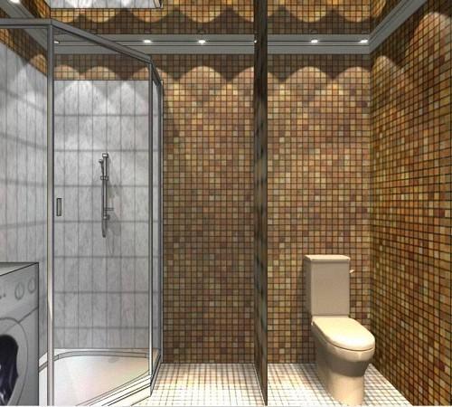 Ванная комната дизайн душевая кабина своими руками